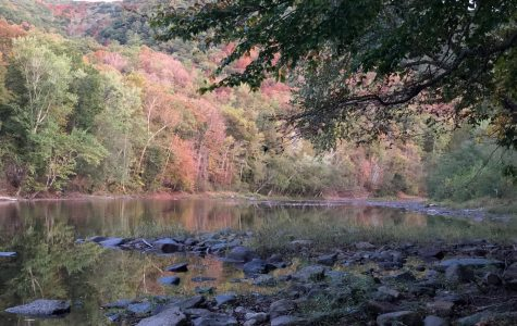 A photo of the Greenbrier River Trail.