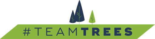 All donations to Team Trees go to the Arbor Day Foundation, an organization that plants one tree for every dollar they receive.