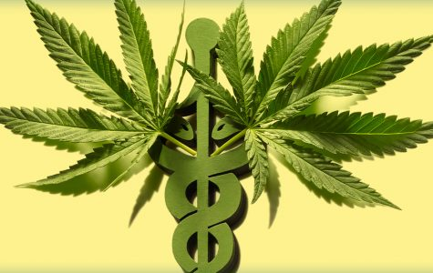 Marijuana leaves on the staff of Aesculapius (the medical symbol).