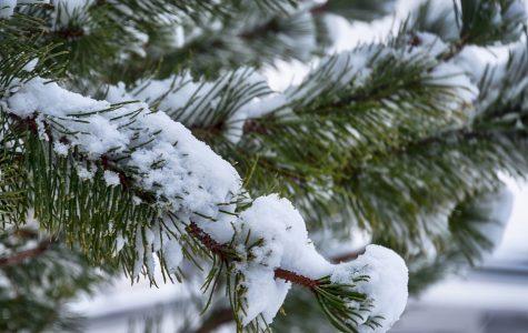 Although a white Christmas sounds like a good idea, do we even want one?